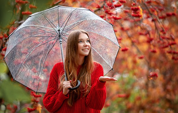 Nedeljni horoskop od 15. do 21. oktobra 2018: Veoma dobar period za Vage, Vodolije i Škorpije, a šta očekuje ostale horoskopske znake