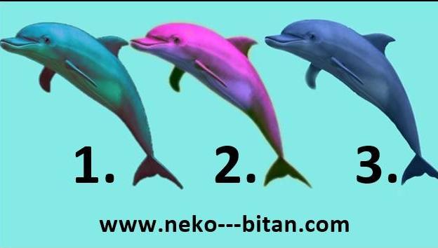 Ovo su DELFINI SREĆE i oni DONOSE LEPE VESTI za vas! Izaberite jednog delfina i saznajte šta vas uskoro LEPO i NEZABORAVNO OČEKUJE.