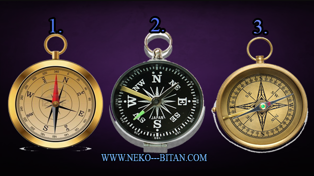 Izaberi jedan kompas i saznaj da li  ste na pravom životnom putu i šta ste zaslužili svojim delima?
