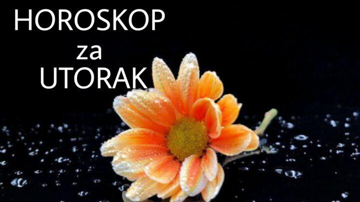 HOROSKOP za UTORAK 28. septembar 2021. godine: Bik UMORAN, Jarac USPEŠAN, Blizanci skloni ŠALI, Ribe ZADOVOLJNE!